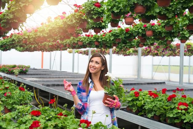 Флорист в теплице с цветами в руках и смотрит вверх.