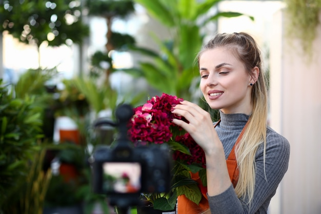 Florist vlogger touching red hydrangea flower. beautiful woman looking at blooming hortensia in flowerpot. girl recording home plant vlog for gardeners.