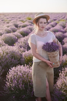 Florist with wicker basket with lavender in her hands walk in meadows. woman look for the best fresh flowers in the fields