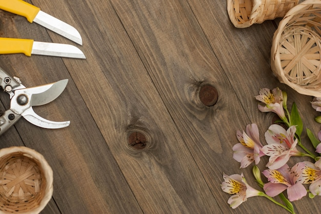 Floristic tools on rustic board. worplace, copy space.