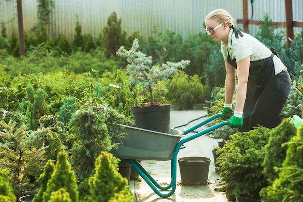 苗を扱う花屋の女性