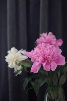 Цветущие пионы в вазе на темно-сером фоне. открытка с цветочными цветами с copyspace