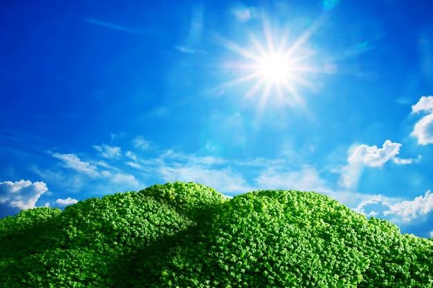 晴れた日に植生を繁栄