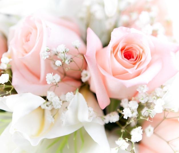 Цветок крупным планом