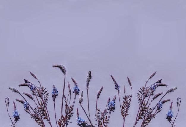 フラワーアレンジメント。パステルパープルトーンの生花のボーダー。夏のコンセプト。フラットサンベッド、上面図、コピースペース