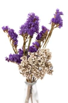 흰색 바탕에 투명한 꽃병에 말린 꽃의 꽃꽂이