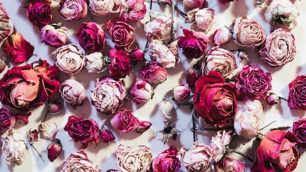 花の品揃え花の組成。ドライローズヘッドのランダムな配置。