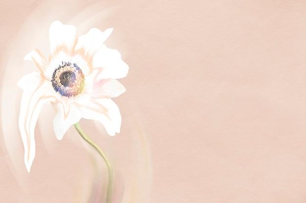 Sfondo di fiori, arte psichedelica anemone rosa e bianco