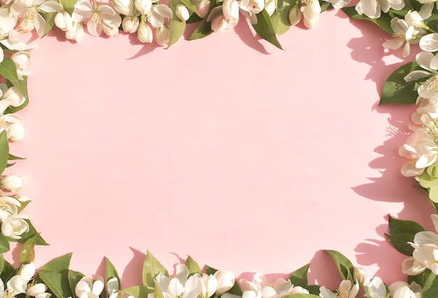 Flower background, white spring flowers on pink background. space for text. the view from the top. frame of flowers.
