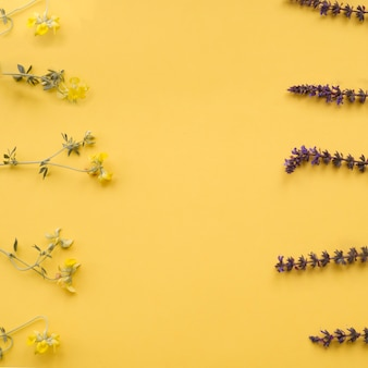Flower borders on yellow background