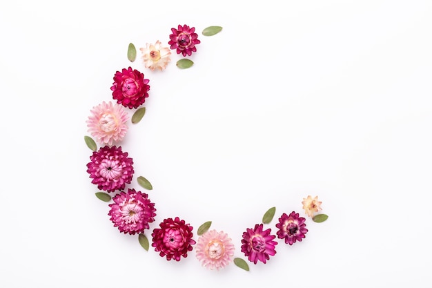 花の組成。白い背景にユーカリの葉とドライフラワー。フラットレイ。上面図。コピースペース-画像