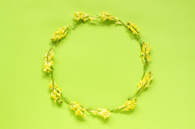 Flower composition. frame floral round wreath of yellow flowers on green