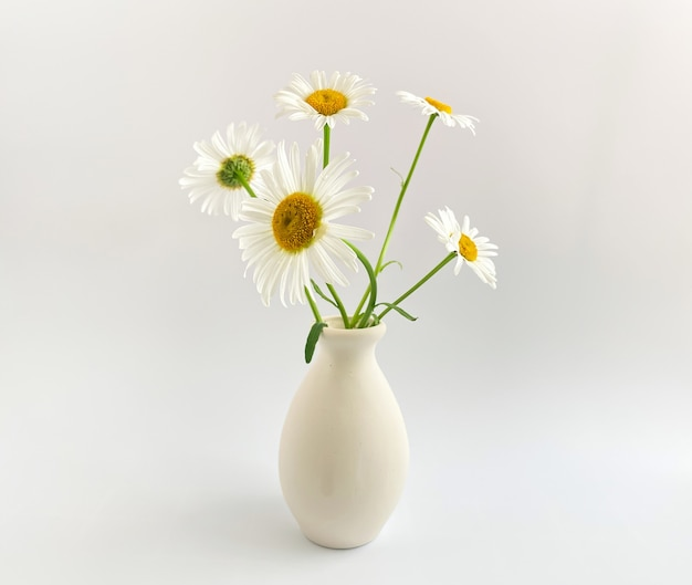 Цветочная композиция. фотография в высоком ключе с белыми ромашками в глиняной вазе на белом фоне. шаблон естественного света для ваших проектов.