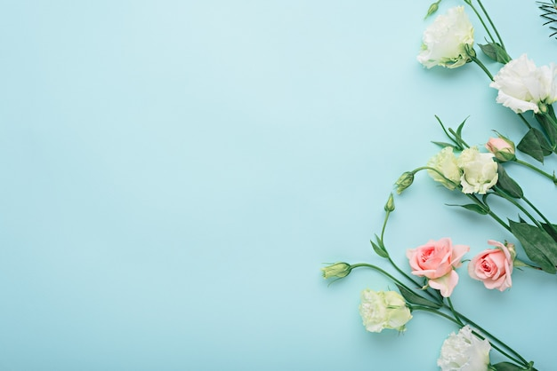 Flower composition, white eustoma and pink rose on blue background with copy space, flat lay, top view, flower background concept