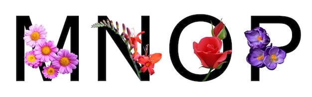 봄 여름 컨셉의 장식을 위해 실제 꽃으로 만든 꽃 글꼴 알파벳 mnop