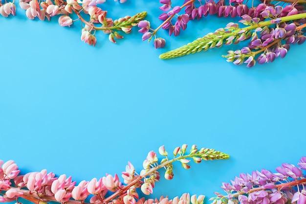 Flower frame on blue background. lupine flowers