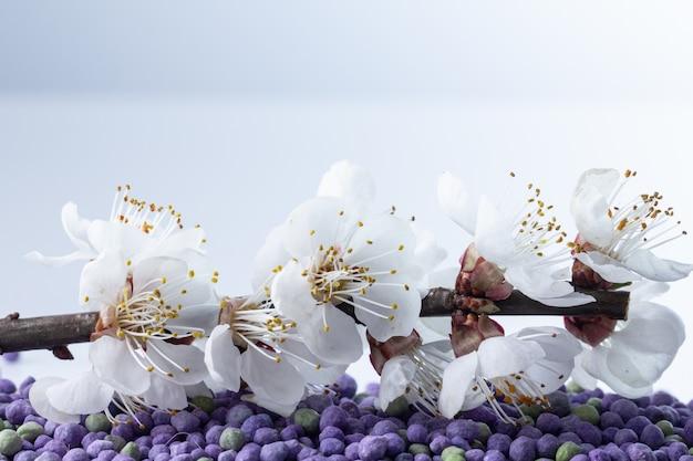 미네랄 비료에서 자라는 꽃. 개념