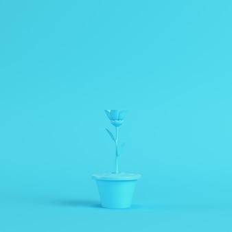 明るい青の鍋に花を咲かせる