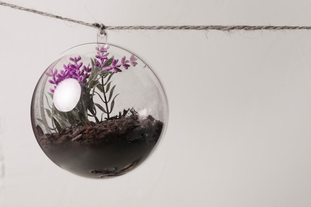 Flower inside glass ornament hanging from a rope
