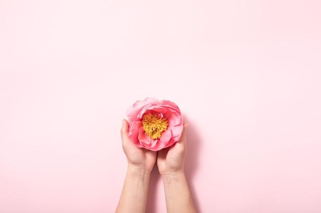 パステルピンクの背景にフラットスタイルの花のレイアウト。最小限の性質のフラットレイ。創造的な夏のフラットレイとトップビューの背景。