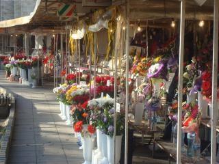 花市場の色