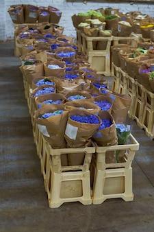 Flower market with various multicolored fresh flowers pots hydrangea bellflower multilevel showcase