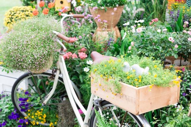 Цветок на велосипеде