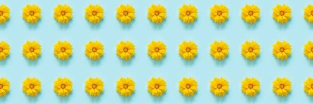 花のパターン。水色の壁に自然の黄色い花で作られたバナー