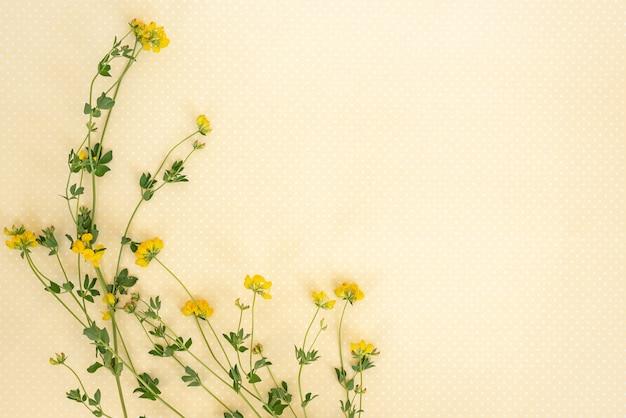 Flower pattern border frame of wildflowers.