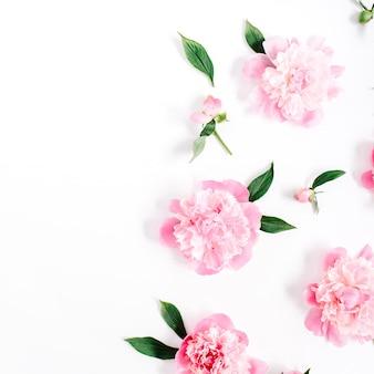 白い背景にピンクの牡丹の花、枝、葉、花びらの花柄。フラットレイ、トップビュー