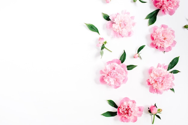 白地にピンクの牡丹の花、枝、葉、花びらの花柄