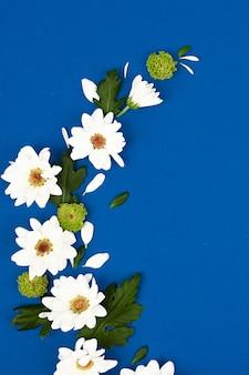 花のパターン。青色の背景に白い花。テキストのためのスペース。平面図、フラットレイアウト。