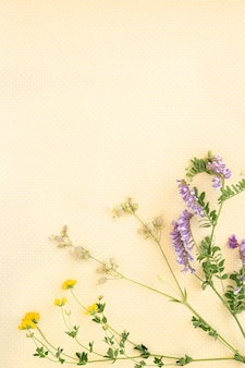 Flower pattern of wildflowers. composition of flowers and plants.