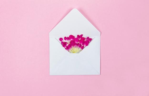 분홍색 배경에 흰색 봉투에서 꽃 꽃잎