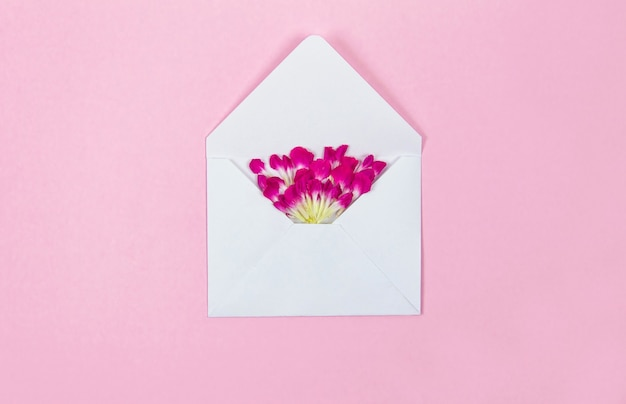 Flower petals from a white envelope on a pink background