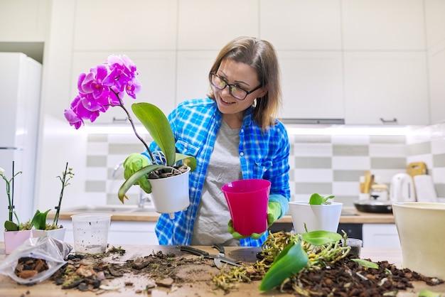 화분에 꽃 호접란 난초, 이식 식물을 돌보는 여성, 주방 인테리어