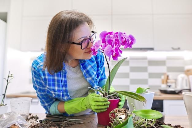 鉢植えの花ファレノプシス蘭、移植植物を気遣う女性、スペースキッチンインテリア