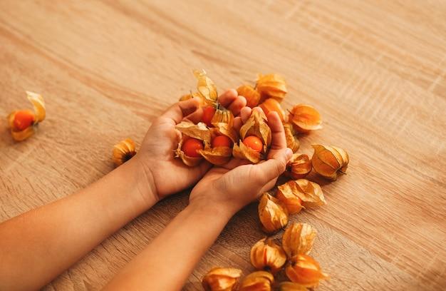 Flower of physalis in children's hands