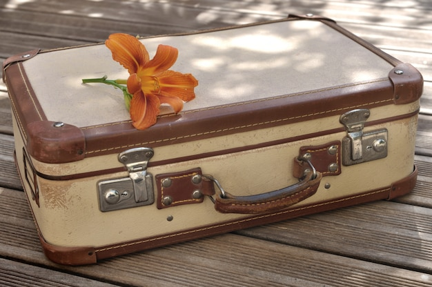 Flower placed on a small retro suitcase on wooden floor