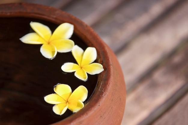 スパ瞑想ムードのために禅スタイルで装飾されたフラワープルメリアまたはフランジパニ