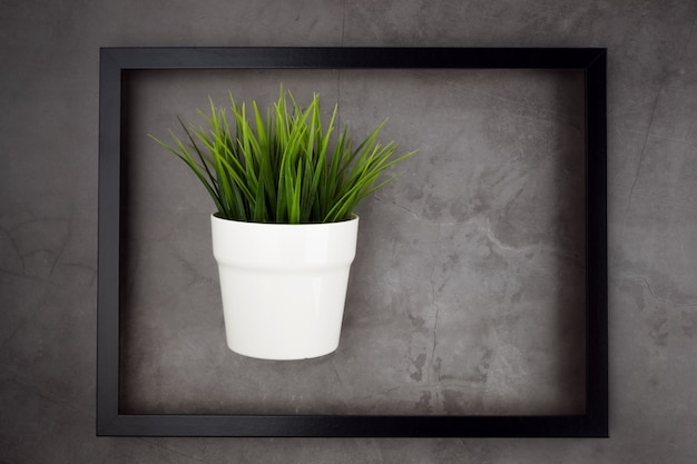 Flower in a pot in a black frame on gray