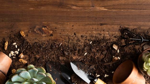 床に植木鉢
