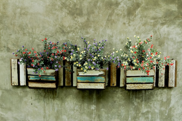 Flower in pot on the wall