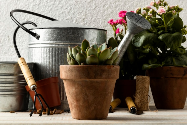 Flower pots and watering can