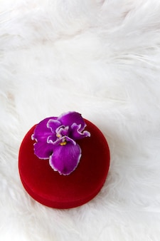 Flower on red gift box