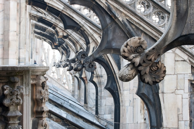 Flower sculptures, milan cathedral