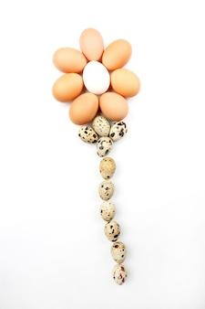 밝은 배경에 닭고기 달걀의 꽃 모양