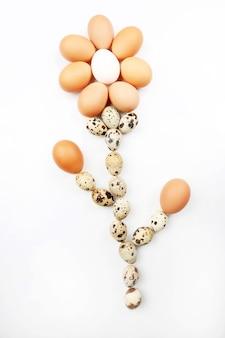계란의 꽃 모양