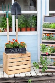 여름 장식이 있는 꽃집 인테리어 베란다 집 녹색 식물이 있는 집의 나무 현관