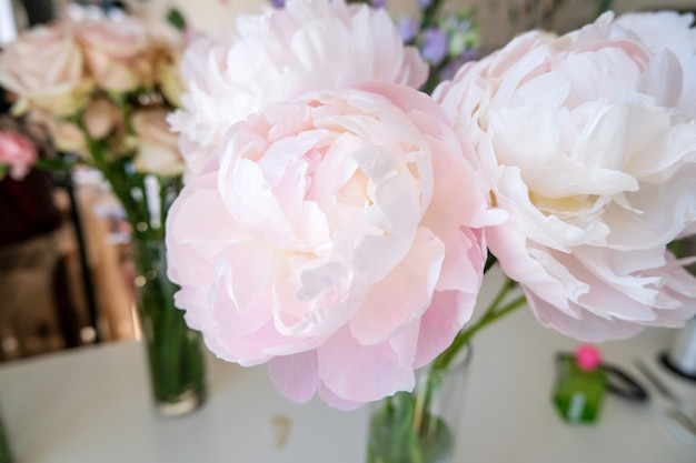 Flower shop with holiday beautiful flowers. large peonies for bouquet close-up.